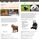 Развлечение на карантине: смотрим 3D животных в Google на iPhone