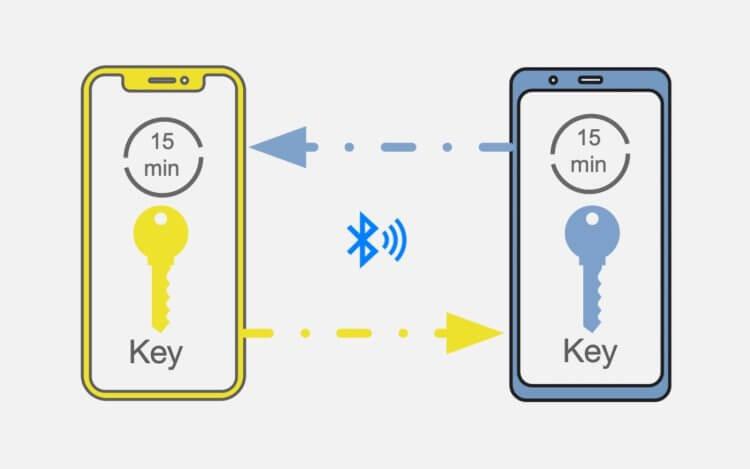 Apple просят снять ограничение на Bluetooth в iPhone: зачем это нужно?