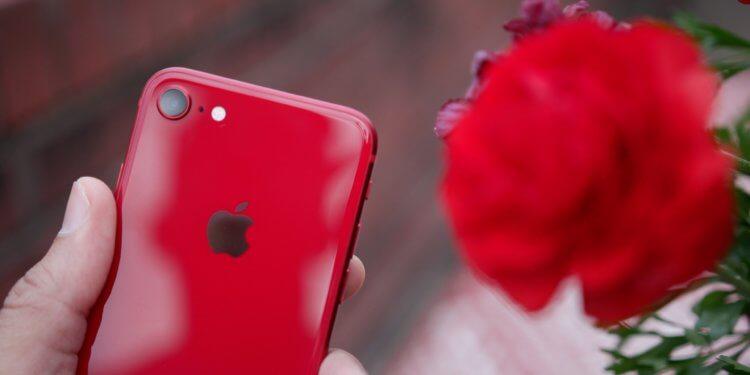 iPhone SE 2020 — это бомба! Вот все, что нам о нем известно