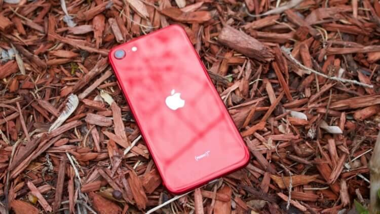 Apple начала продавать iPhone SE 2020 в России. Как купить дешевле