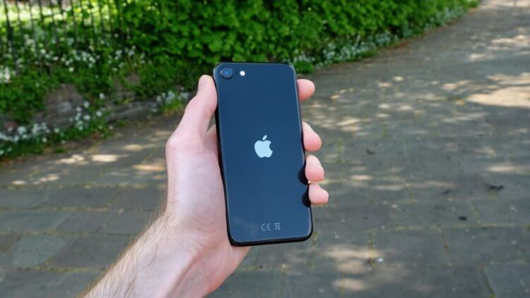 Тим Кук рассказал, чем iPhone SE лучше любого флагмана на Android