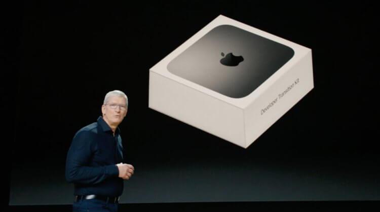 Тим Кук объявил, когда выйдет первый Mac на базе мобильного процессора
