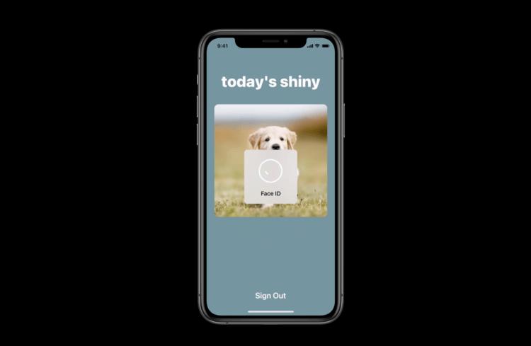 Пароли больше не нужны! Safari в iOS 14 умеет входить на сайты по Face ID и Touch ID