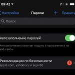 iOS 14 может подсказать, насколько надежны ваши пароли на сайтах