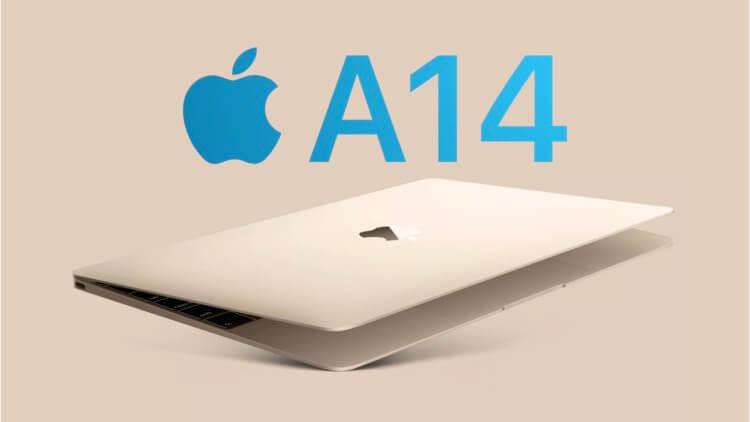 MacBook с Apple Silicon: до 20 часов работы от аккумулятора и цена 799 долларов?