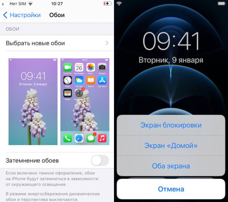 Где скачать обои из iOS 14.2 и iPhone 12 в высоком качестве