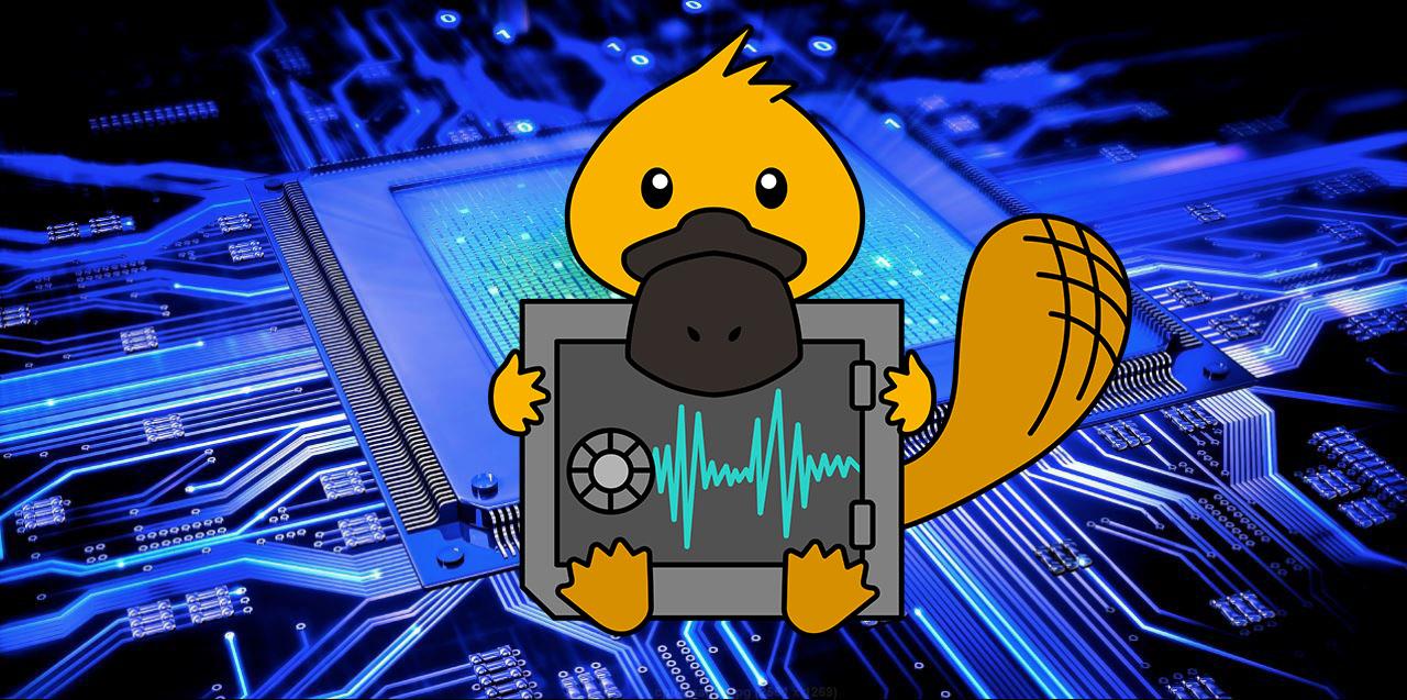 Атака Platypus позволяет воровать данные с процессоров Intel