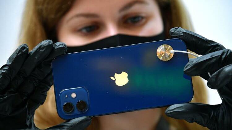 «Скажите спасибо»: в России ещё не самые дорогие iPhone 12