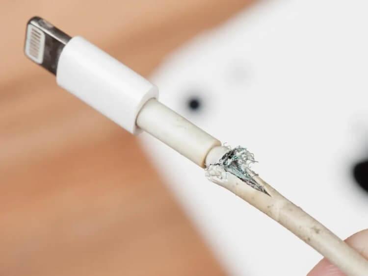 Apple разрабатывает неубиваемый Lightning — он не будет изнашиваться